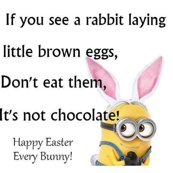 Funny-Pictures-of-Easter-for-Everybody-1.jpg